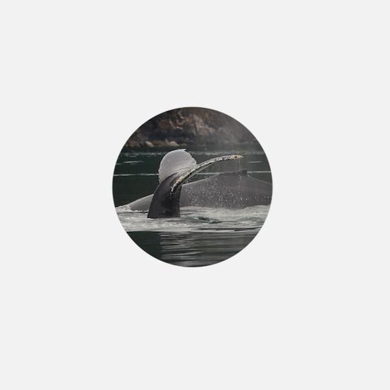 whales Mini Button