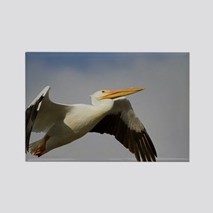 White Pelican Departure Rectangle Magnet
