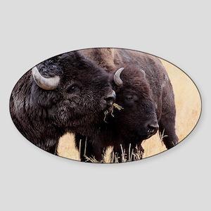 bison friendship Sticker (Oval)