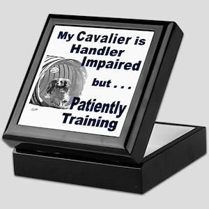 Cavalier Agility Keepsake Box