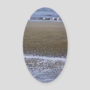 Sea Gulls in a Sound Oval Car Magnet