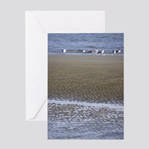 Sea Gulls in a Sound Greeting Card