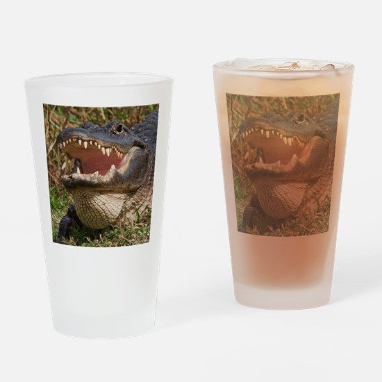 alligator with teeth showing Drinking Glass