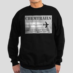illuminati new world order 911 Sweatshirt