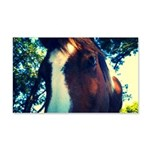Lovey Pinto Mare Wall Decal