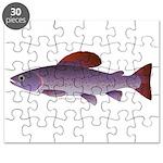 Arctic Grayling Puzzle