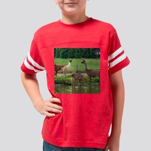 llamatrio2_rnd Youth Football Shirt
