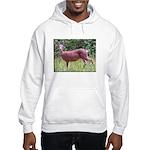 Doe in Grass Hooded Sweatshirt