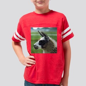 llama3_rnd Youth Football Shirt