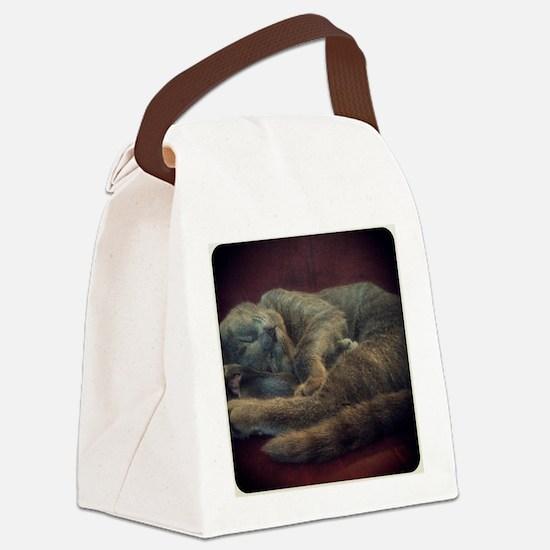 sleepy kitty Canvas Lunch Bag