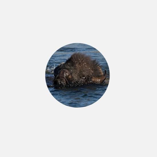 bison swimming Mini Button