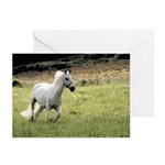 Greeting Cards (Pk of 10) featuring