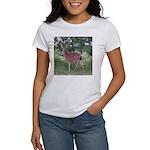 Doe in the Shade Women's T-Shirt
