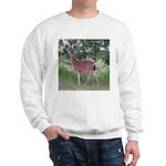 Doe in the Shade Sweatshirt