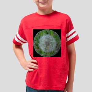 Dandelion Fuzzy bl tile Youth Football Shirt