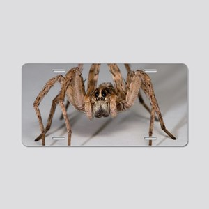 Wolf Spider Aluminum License Plate