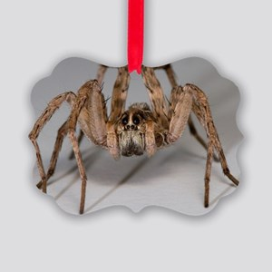 Wolf Spider Picture Ornament