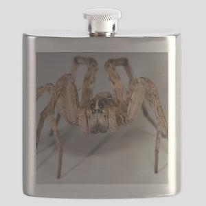 Wolf Spider Flask