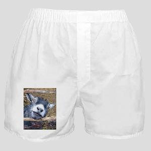 Give Us A Kiss! Boxer Shorts