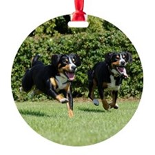 Entlebucher Mountain Dogs Running Round Ornament