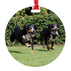 Entlebucher Mountain Dogs Running Ornament