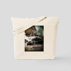 IMG_20130730_232209 Tote Bag