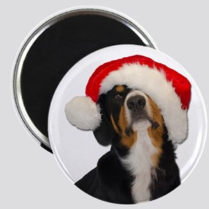 Dear SantaPaws, I can Explain Magnets