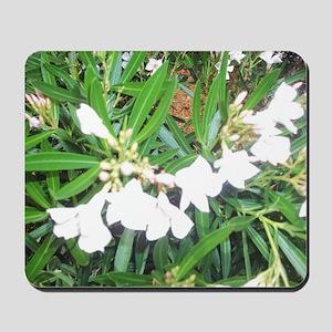 NAPLES FLOWERS Mousepad