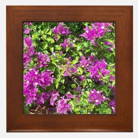 NAPLES FLOWERS Framed Tile