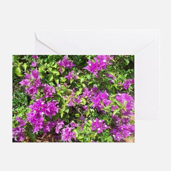 NAPLES FLOWERS Greeting Card