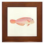Pearly Razorfish Framed Tile