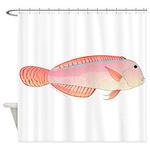 Pearly Razorfish Shower Curtain