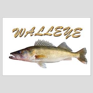 Golden Walleye Posters
