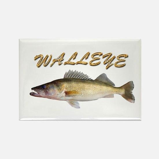 Golden Walleye Magnets