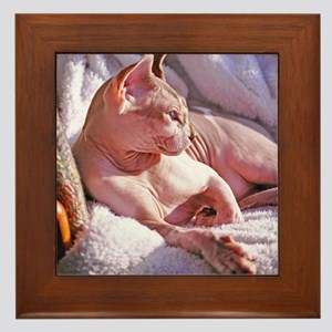 Little George Hairlesson Framed Tile