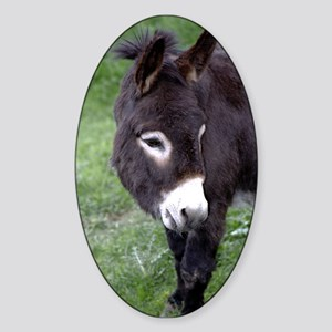 Black Donkey Oval Sticker