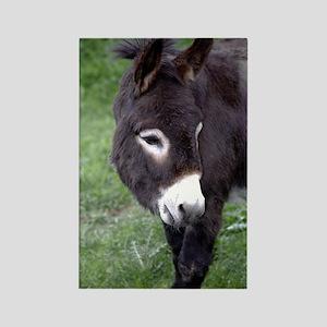 Black Donkey Rectangle Magnet