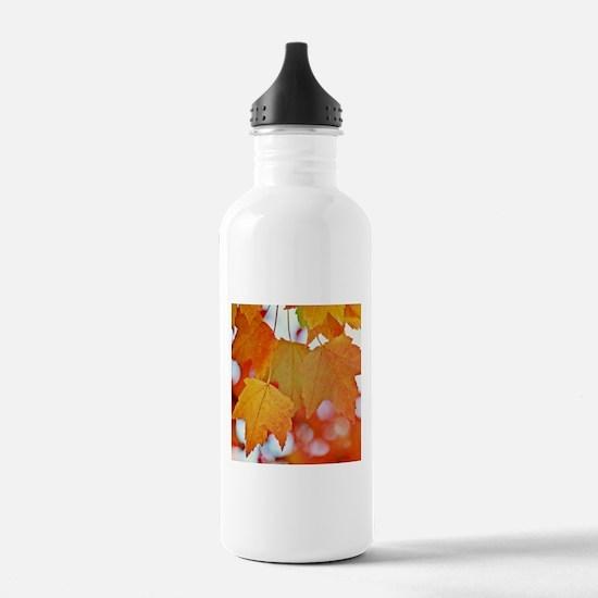 Modern Fall Leaves Water Bottle