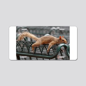 Squirrel resting laid out Aluminum License Plate