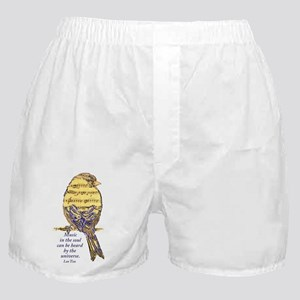 Music in the Soul quote Music Note Bird Boxer Shor