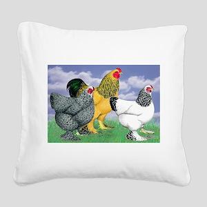 Three Brahmas Square Canvas Pillow