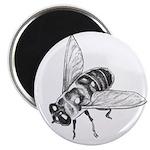 Flowers & Honey Bee Art Magnet Wildflowers Gif