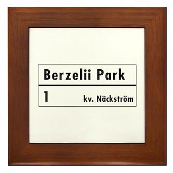 Berzelii Park, Stockholm - Sweden Framed Tile