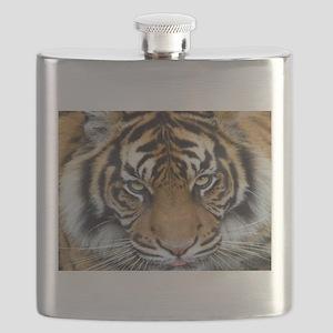 Focus on goal and success Sumatran Tiger King - C