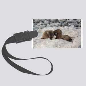 Baby Sea Lions Galapagos Luggage Tag