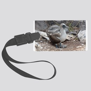 Blue-footed Booby with Baby Galapagos Luggage Tag