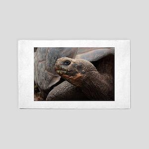 Tortoise Galapagos 3'x5' Area Rug