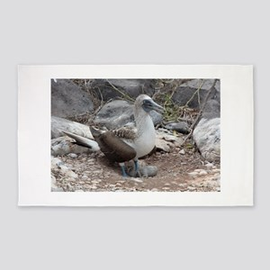 Blue-footed Booby with Baby Galapagos 3'x5' Area R