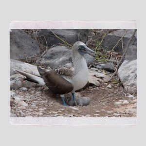 Blue-footed Booby with Baby Galapagos Throw Blanke