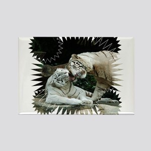 Kiss love and joy White Bengal Tigers 3 Magnets